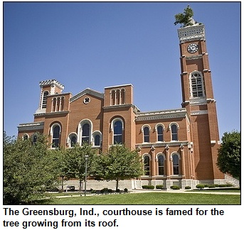 Greensburg, Indiana courthouse with tree.