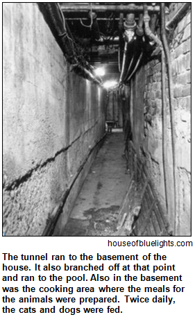 Tunnel leading to the basement at the House of Blue Lights in Indianapolis. Image courtesy houseofbluelights.com.