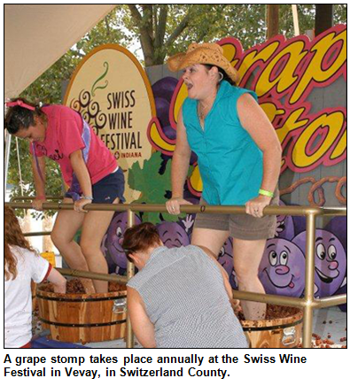 A grape stomp takes place annually at the Swiss Wine Festival in Vevay, in Switzerland County.